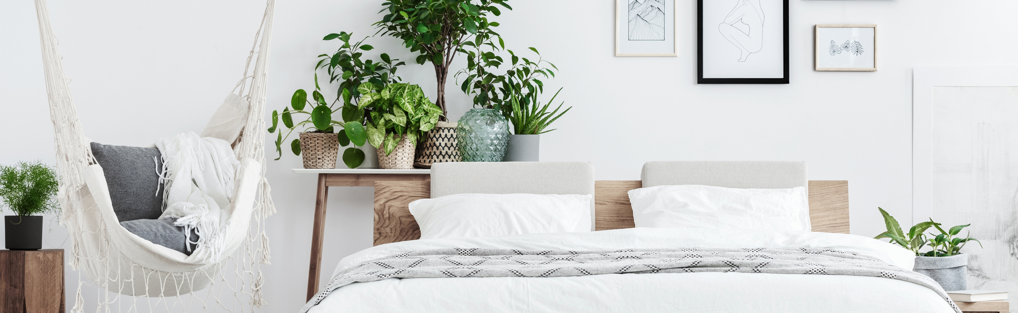 bed with plants